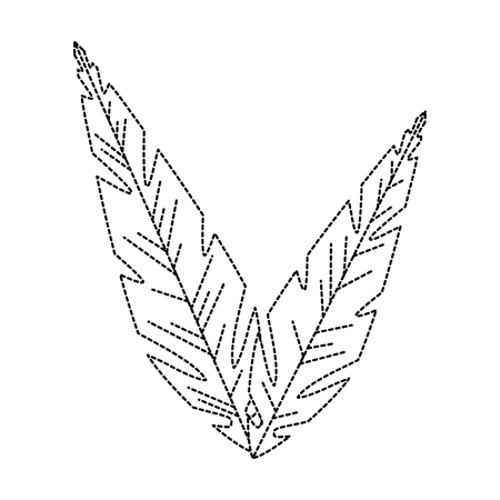 feathers decoratives isolated icon vector illustration design