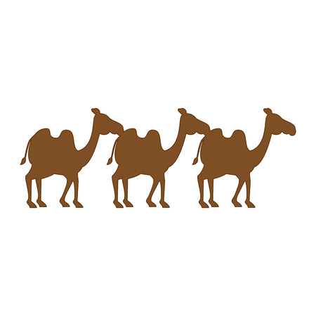 manger camels characters icon vector illustration design