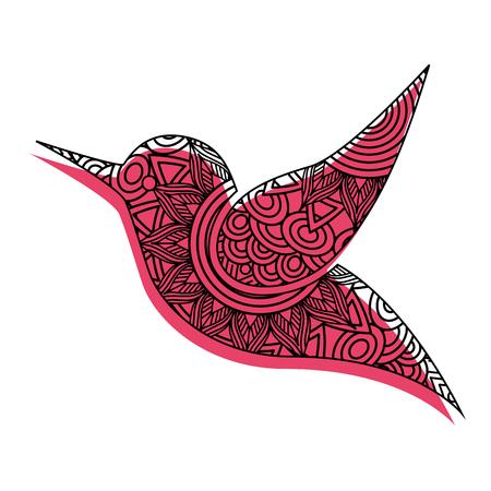 hand getekend voor volwassen kleurplaten met kolibrie vectorillustratie
