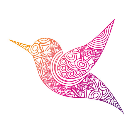 hand drawn for adult coloring pages with hummingbird vector illustration color line gradient design Stock Illustratie