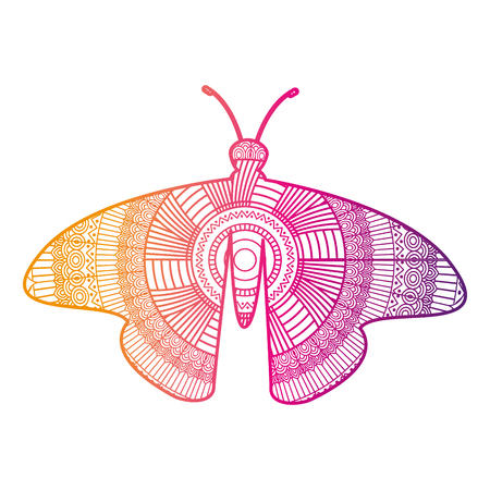 hand drawn for adult coloring pages with moth bug vector illustration color line gradient design