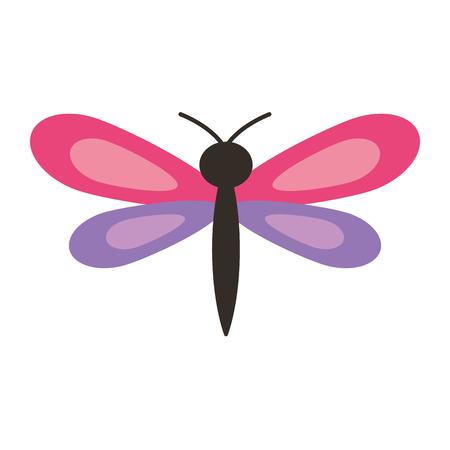 roze en paarse dragonfly insect lente seizoen vector illustratie