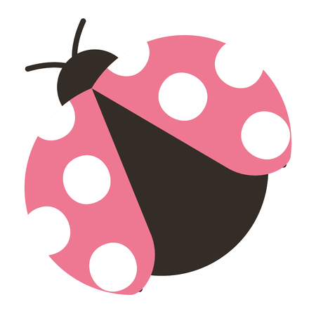 Ladybug icon Illustration