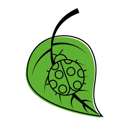 ladybug on leaf spring time vector illustration
