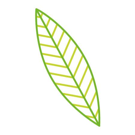 녹색 잎 자연 단풍 식물 벡터 일러스트 컬러 라인 디자인