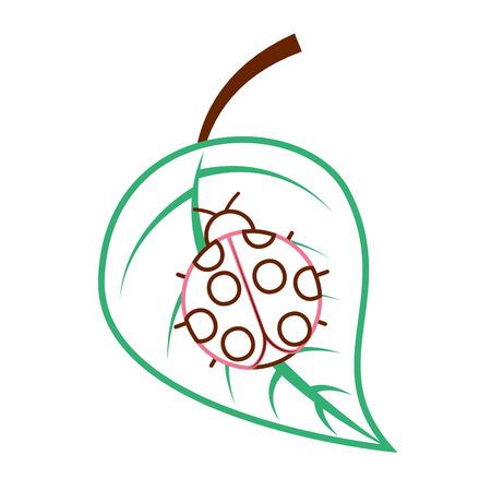 Ladybug on leaf spring time vector illustration color line design Ilustracja