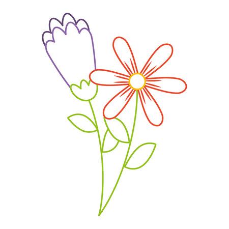 Ontwerp van de de illustratiekleurlijn van de twee bloemen het decoratieve lente vector Stock Illustratie
