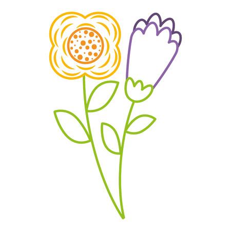 twee bloemen decoratieve lente afbeelding vector illustratie kleur lijn ontwerp