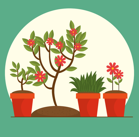 beautiful flowers and plants cultivated in pot gardening concept vector illustration graphic design Ilustração