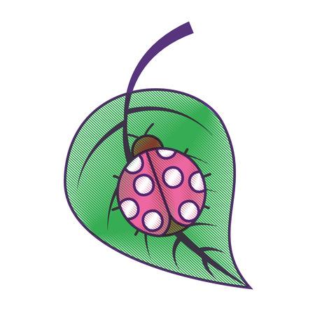 ladybug on leaf spring time vector illustration drawing design