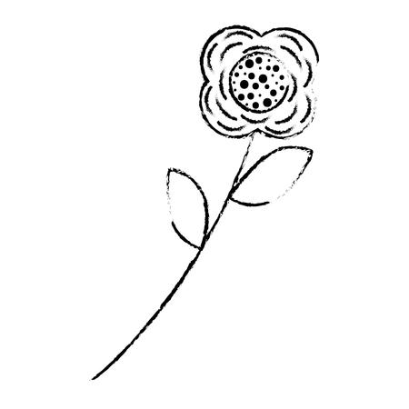 flower stem leaves nature petals decoration vector illustration sketch design