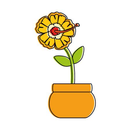 exotic flower isolated icon vector illustration design Illustration