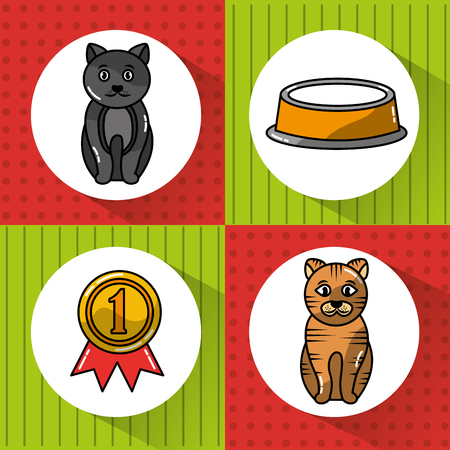 pet cats animal with bowl food and medal winner vector illustration