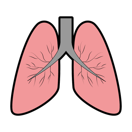 human lungs isolated icon vector illustration design Reklamní fotografie - 94440245
