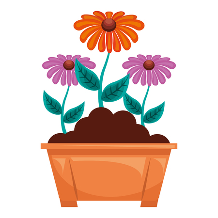 flowers in pot gardening spring decoration vector illustration Ilustrace