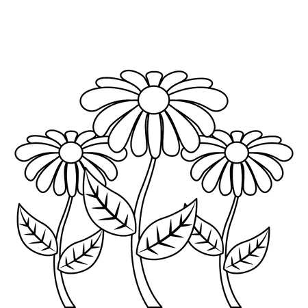 decoration three rose stem petal flower leaf botanical vector illustration outline design