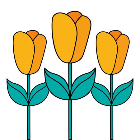 flowers in pot gardening spring decoration vector illustration Çizim