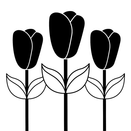 Three tulip stem petal flower leaf botanical vector illustration. Ilustração