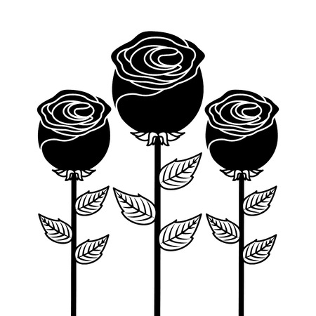 decoration three stem petal flower leaf botanical vector illustration 일러스트