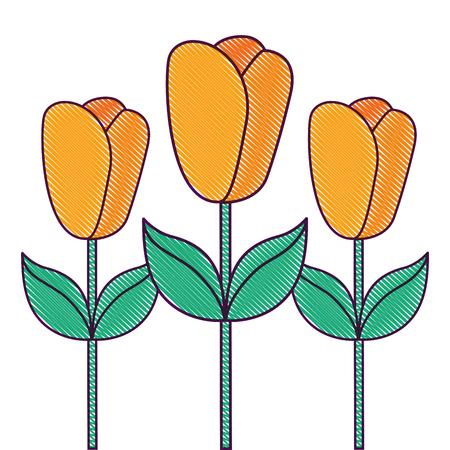 decoration three stem petal flower leaf botanical vector illustration Ilustração