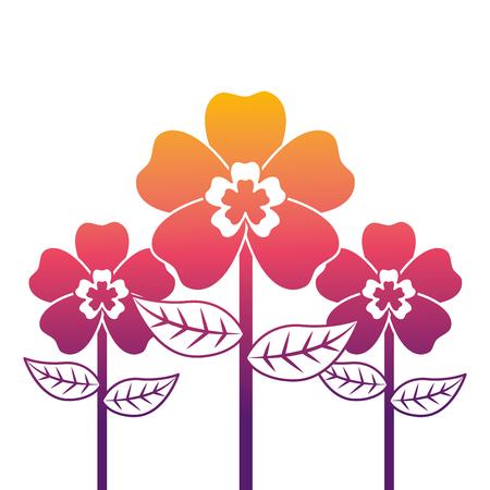 decoration three stem petal flower leaf botanical vector illustration Illustration