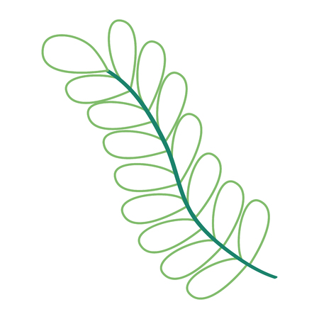 spring branch leaves nature foliage vector illustration color lineal design