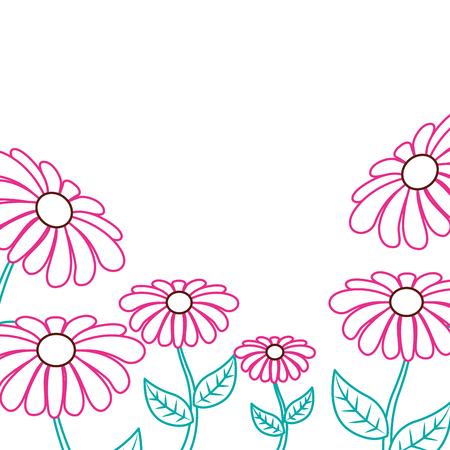 美しいヒナギクの花枠飾装飾装飾装飾ベクトルイラストカラーラインデザイン。  イラスト・ベクター素材