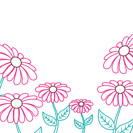 Beautiful daisy flower frame decoration ornament vector illustration color lineal design. Vettoriali