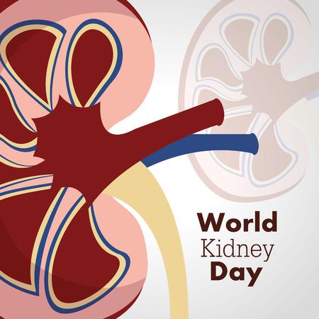 wereld nier dag poster uitnodiging ziekte zorg campagne vectorillustratie
