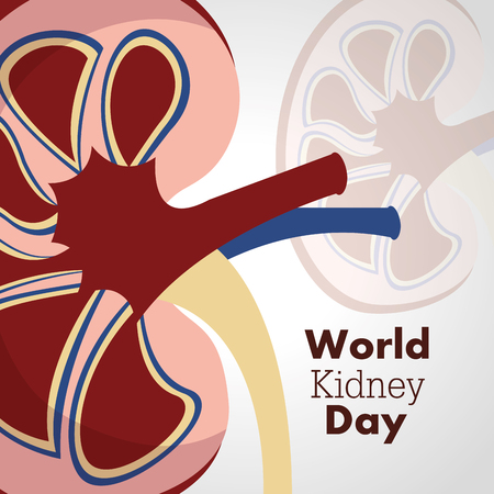 world kidney day poster invitation disease care campaign vector illustration