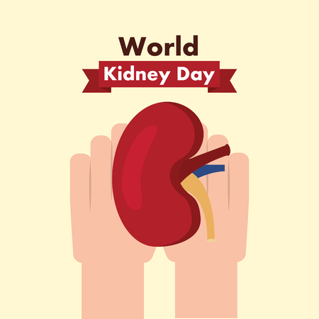 world kidney day medical part human healthy vector illustration
