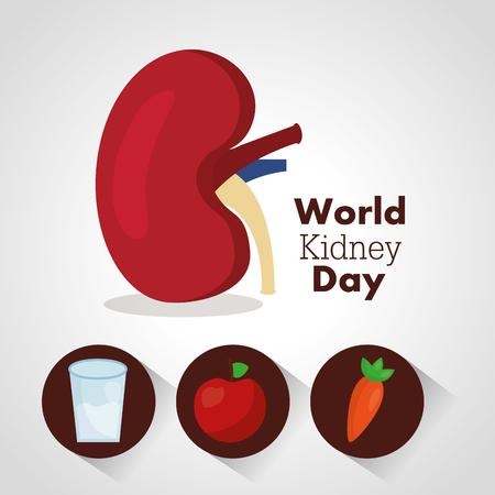 世界腎臓デーカード健康食品ウォーターケアベクトルイラスト 写真素材 - 94968560
