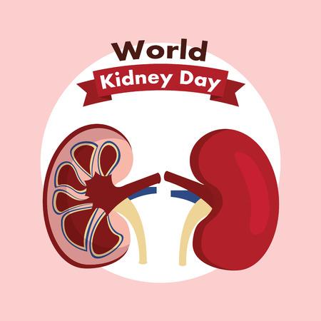 世界腎臓デーヘルスケア医療キャンペーンポスターベクトルイラスト 写真素材 - 94968562