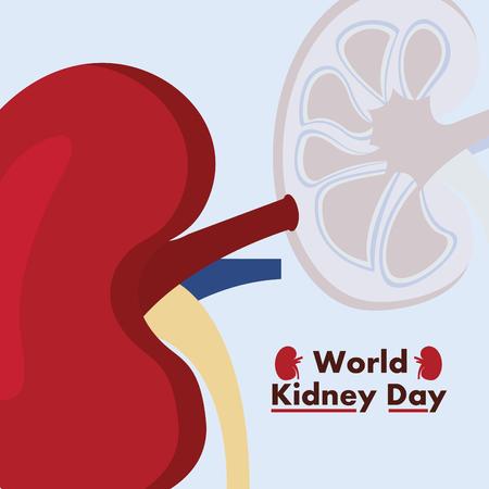 world kidney day awareness disease care vector illustration