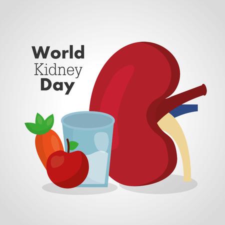 世界腎臓日カード食品栄養ダイエット健康ベクトルイラスト  イラスト・ベクター素材