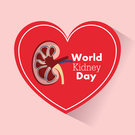 world kidney day heart support medical campaign vector illustration