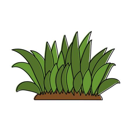 Illustration de brousse cultivées icône isolé Banque d'images - 95159390