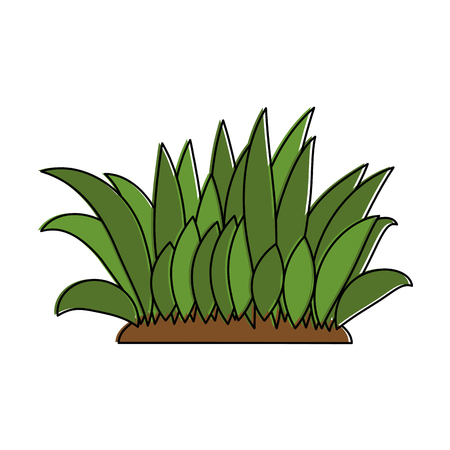 Illustration of bush cultivated isolated icon