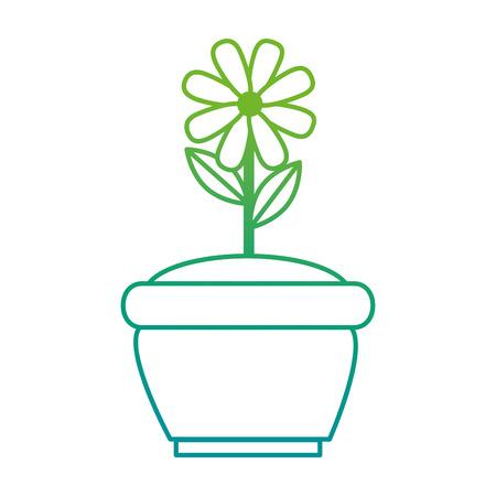 Beautiful flower cultivated in pot vector illustration design. Ilustração