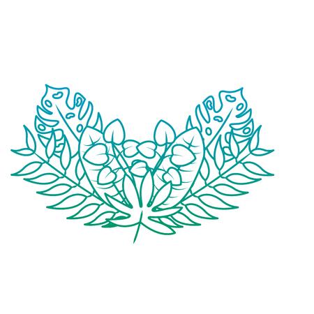 Natural decoration arrangement leaves tropical vector illustration green color line image