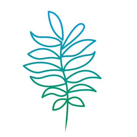葉植物自然ベクターイラスト緑色ライン画像を持つ木の枝