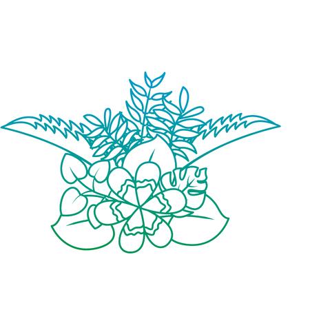 Flower natural decoration arrangement leaves tropical vector illustration green color line image