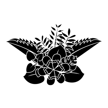 flower natural decoration arrangement leaves tropical vector illustration Illustration