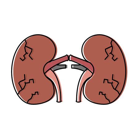 Reins poumons humaine humaine médicale illustration vectorielle grungy endommagé Banque d'images - 95146509