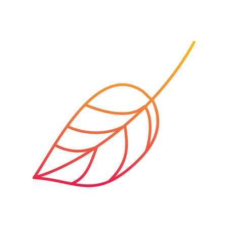 Leaf foliage botany design