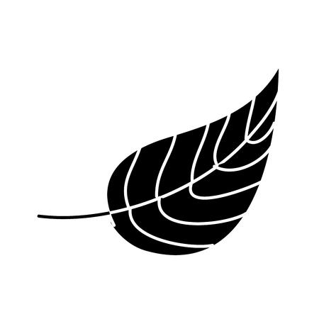 autumn leaf foliage natural icon vector illustration black and white design