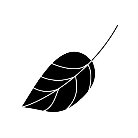 Leaf, botany frond natural icon vector illustration, black and white design 向量圖像