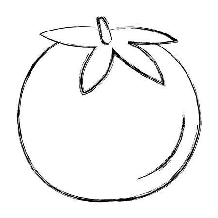 fresh tomato isolated icon vector illustration design Stock Vector - 95425739