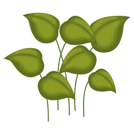 leafs plants garden icon vector illustration design