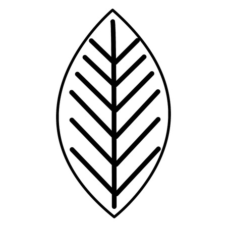 leaf plant isolated icon vector illustration design 일러스트